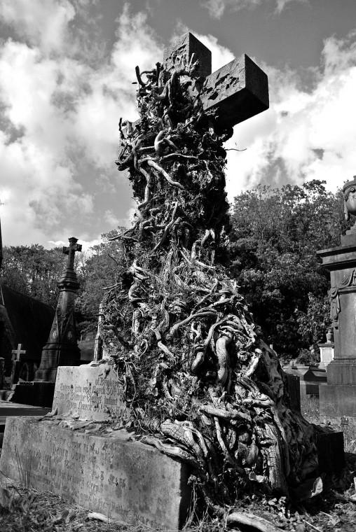 cemetery-458337_1280